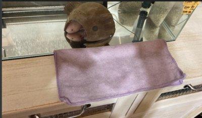 水槽とタオル